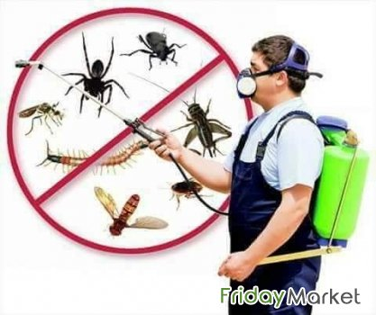 Mover CLEANERS PACKER SHIFTER PEST CONTROL SPRAYS Carpet & S Riyadh Saudi Arabia